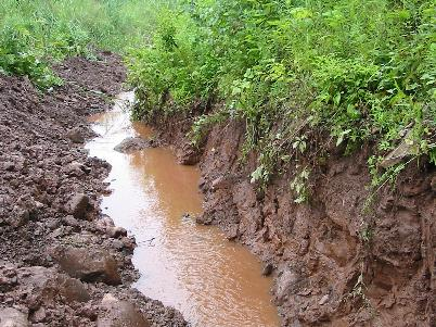 soil pollution from detergents in the water Start studying chapter 21 water pollution learn it includes human wastes, soaps, and detergents primarily from soil erosion, increases water.